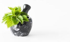 Nettle juice - 9 reasons why you should drink it